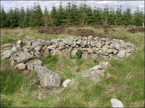 Clune Hill Stone Circle, Aberdeenshire