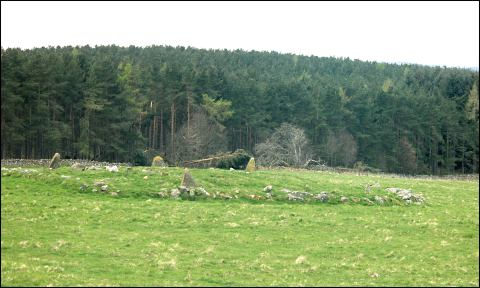 Knock Wood Stone Circle, Aberdeenshire